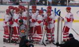 The Red Wings gather on the rink at Wrigley Field to celebrate their Winter Classic victory.