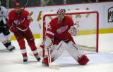 Jimmy Howard gets set in his crease, with Brad Stuart skating around the side of the goal.