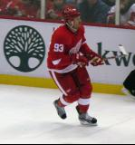 Johan Franzen skates along the left wing boards.