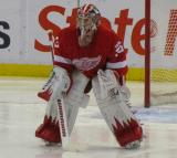 Jimmy Howard gets set to start the second period.