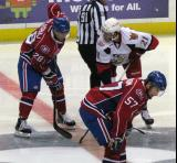 Trevor Parkes of the Grand Rapids Griffins lines up next to Aaron Palushaj of the Hamilton Bulldogs for a faceoff.  Blake Geoffrion is set to take the draw for Hamilton.