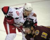 Jeff Hoggan lines up for a faceoff opposite Michael Davies during a game between the Grand Rapids Griffins and the Chicago Wolves.