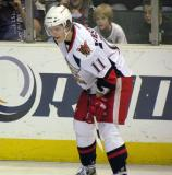 Andrej Nestrasil gets set for a faceoff during a Grand Rapids Griffins game.