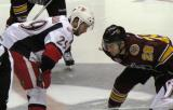 Landon Ferraro of the Grand Rapids Griffins lines up for a faceoff against Alex Friesen of the Chicago Wolves.
