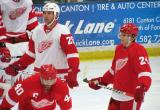 Mike Knuble, Damien Brunner and Henrik Zetterberg wait for a faceoff during a stop in the Red and White Game.