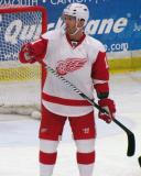 Daniel Cleary gets set for a faceoff during the Red and White Game.