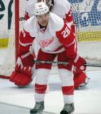 Carlo Colaiacovo crouches to set up for a faceoff during the Red and White Game.