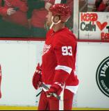 Johan Franzen watches pre-game warmups.