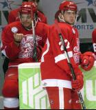 Tomas Tatar stands at the bench during a stop in play in a Grand Rapids Griffins game, with Francis Pare on the bench behind him.