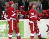 Mark Mitera and Gleason Fournier stand at the bench during a stop in play in a Grand Rapids Griffins game, with Joakim Andersson, Tomas Tarar and Chad Billins on the bench behind them.