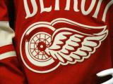The crest of the Detroit Red Wings' 2014 Winter Classic jersey as displayed at the announcement event.