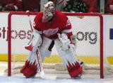 Jimmy Howard gets set in his crease prior to the start of the second period.