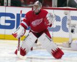 Jimmy Howard gets set in his crease to start the second period.