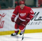 Daniel Alfredsson skates up the right wing boards.