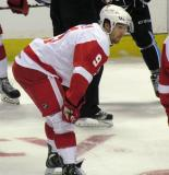 Darren Helm gets set for a faceoff during a Grand Rapids Griffins game.