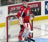 Tom McCollum gets set in his crease at the start of a Grand Rapids Griffins game.