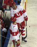Ryan Sproul and Nathan Paetsch stand at the bench during a stop in play in a Grand Rapids Griffins game at Comerica Park.