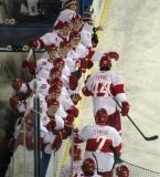 The Grand Rapids Griffins bench celebrates a goal during their game at Comerica Park.