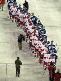 The Grand Rapids Griffins and Toronto Marlies line up for a post-game handshake after a game at Comerica Park.