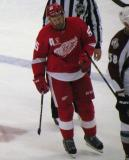 Niklas Kronwall skates back to the bench during a stop in play.