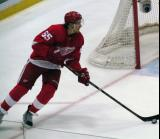 Danny DeKeyser skates with the puck at the side of the Detroit goal.