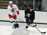 Justin Abdelkader and David Booth come together along the boards during a session at the 2014 MSU Pro Camp.