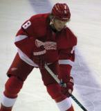 Justin Abdelkader skates along the blue line during pre-game warmups.