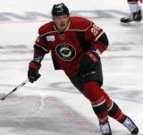 Ruslan Fedotenko of the Iowa Wild skates in a game against the Grand Rapids Griffins.
