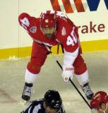Henrik Zetterberg gets set for a faceoff during the Stadium Series game in Denver.
