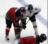Tanner Sorenson lines up against Austin Wuthrich of the Toledo Walleye on a faceoff during a Kalamazoo Wings game.