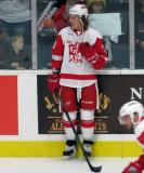 Tyler Bertuzzi stands at the boards during pre-game warmups before a Grand Rapids Griffins game.