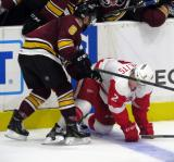 Alex Friesen of the Chicago Wolves knocks Joe Hicketts to the ice in front of the Chicago bench during a Grand Rapids Griffins game.