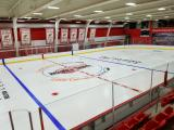 A view of the Red Wings' practice facility.
