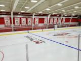 The Red Wings' Stanley Cup banners - originally from Joe Louis Arena - hanging at the team's practice facility.