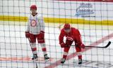 David Pope and Filip Zadina get set for a faceoff during a scrimmage at the Detroit Red Wings' 2018 Development Camp.