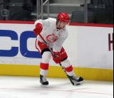 Albin Grewe picks up the puck along the boards during a scrimmage at the Detroit Red Wings' 2019 Development Camp.