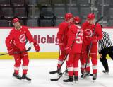 Patrick Holway, Ryan O'Reilly, Moritz Seider, Jarid Lukosevicius, and Elmer Soderblom celebrate a goal during a scrimmage at the Detroit Red Wings' 2019 Development Camp.