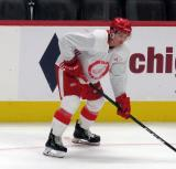 Troy Loggins gets set for a faceoff during a scrimmage at the Detroit Red Wings' 2019 Development Camp.