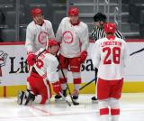 Taro Hirose, Odeen Tufto, Owen Robinson, and Gustav Lindstrom celebrate a goal during a scrimmage at the Detroit Red Wings' 2019 Development Camp.