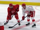 Jarid Lukosevicius and Ethan Phillips line up for a faceoff during a scrimmage at the Detroit Red Wings' 2019 Development Camp.