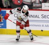 Troy Loggins of the Grand Rapids Griffins bounces a puck on his stick during pre-game warmups before a game against the Milwaukee Admirals.