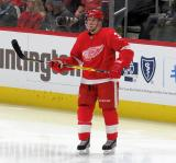 Alex Biega of the Detroit Red Wings looks toward the bench during a stop in play in a game between the Red Wings and the Calgary Flames.