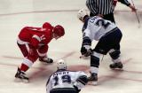 Dan Cleary gets set for a faceoff against Los Angeles' Craig Conroy, whose winger is former Red Wing Sean Avery.